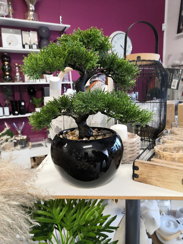 Bonzai-puu ruukussa