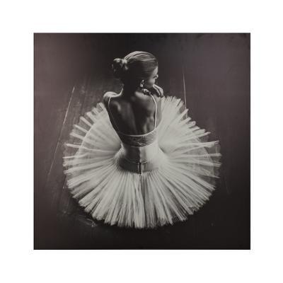 Canvastaulu balettitanssija