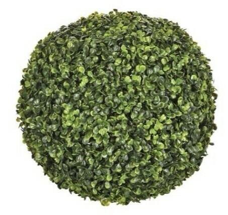Gröna pyöreä kasvi