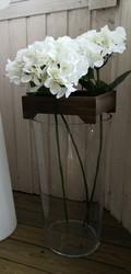 Valkoinen Hortensia