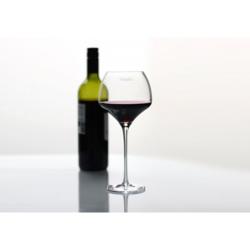 Vinalito viinilasit