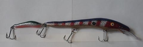 Hajakka väri 2004