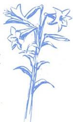 Art Impression leima Easter lillies