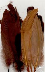 Höyhenet ruskea lajitelma 15kpl