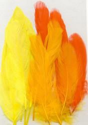 Höyhenet kelta-oranssi lajitelma 15kpl