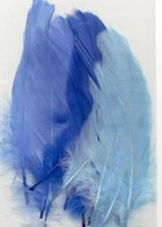Höyhenet siniset lajitelma 15kpl
