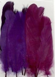 Höyhenet violetit lajitelma 15kpl