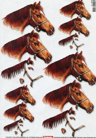 3D-kuva Stenboden ruskea hevonen