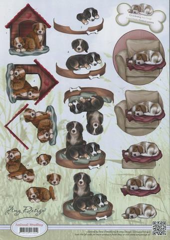 3D-kuva Amy Design 3d-kuva koirat