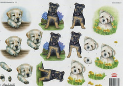 3D-kuva Wekabo koiranpennut