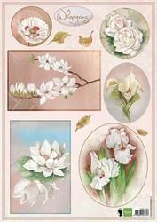 MD korttikuvat vaaleat kukat