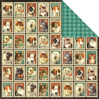Graphic45 paperi Raining Cats and Dogs Mr. Whiskers
