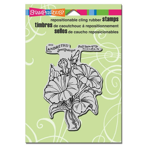 Stampendous leimasin Morning glory