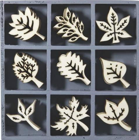 Puukuviorasia lehdet