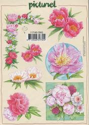 Korttikuvat picturel pinkit kukat a5