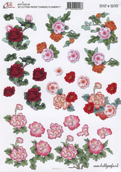 CM 3d-kuvat punaisia kukkia