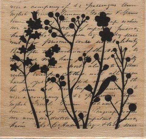 Hampton Art leimasin kasvit ja tekstitausta