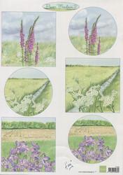 Korttikuvat Flower Meadows2 MD