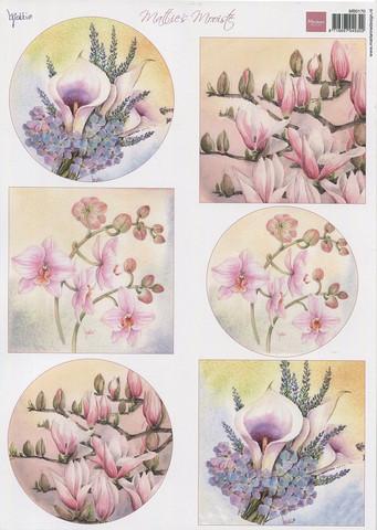 Korttikuvat Mattie kukat callat, orkideat  MD a4