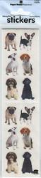 Paper house koiratarrat small mixed dogs