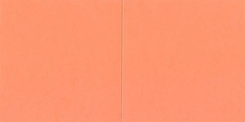 Neliökorttipohjat salmon lohenpunainen 13,5x13,5cm 10kpl
