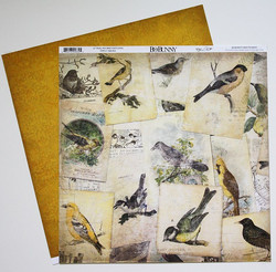 Bo Bunny paperi Trail mix bird watching 12x12