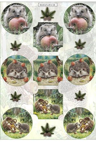 Helmiäishohtoiset korttikuvat syksyiset siilit 26