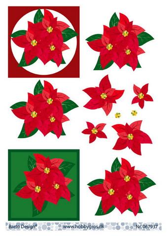 BD 3d-kuva joulutähdet