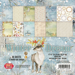 Craft & You Winter Dream paperikko 6x6