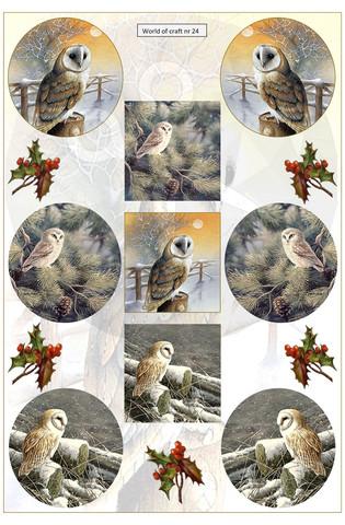 Helmiäishohtoiset korttikuvat talvipöllöt nr24