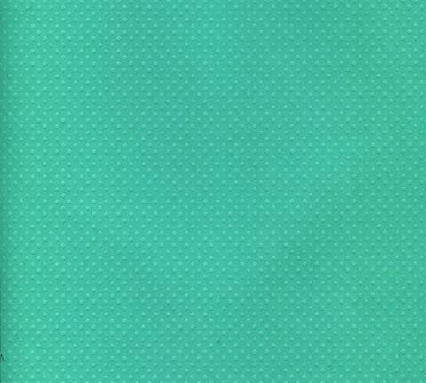 Bazzill Dotted Swiss pilkkukartonki tumma minttu 30,5x30,5cm
