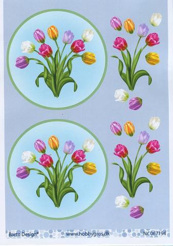 3d-kuvat kauniit tulppaanit ympyrässä Barto Design