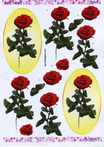 3d-kuvat punainen ruusu ovaalissa Barto Design