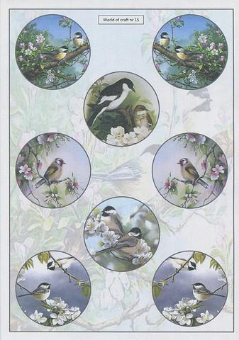Helmiäishohtoiset korttikuvat linnut ja kukat 15