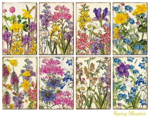 Decorer korttikuvat Spring Meadow 24kpl