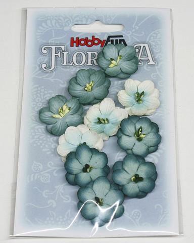 Florella koristekukat sininen 10kpl 013