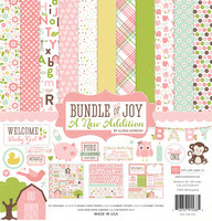 Echo Park collecktion kit paperisetti Bundle of Joy Girl 12x12
