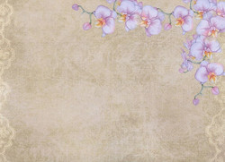 Kortteilukirjanen Romantic Orchid a4 CE