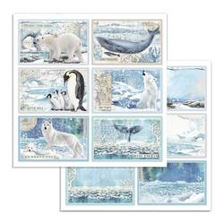 Stamperia paperikko Arctic Antarctic 12x12