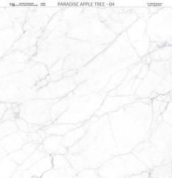 Paper Heaven paperi Paradise Apple Tree #4 30,5x30,5cm