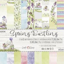 Craft O´Clock paperikko Spring Bustling 15,25x15,25cm