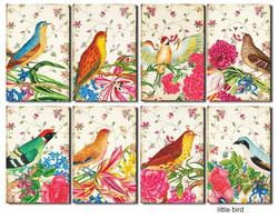 Decorer korttikuvat Little bird 24kpl