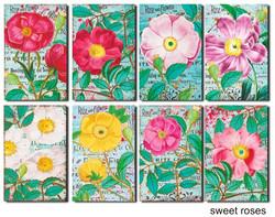 Decorer korttikuvat Sweet Roses 24kpl