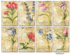 Decorer korttikuvat Herbarium 24kpl