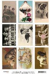 Reprint kuva-arkki Vintage Dogs