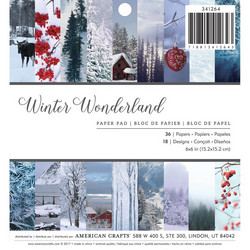 American Crafts paperipakkaus Photo Real Winter Wonderland