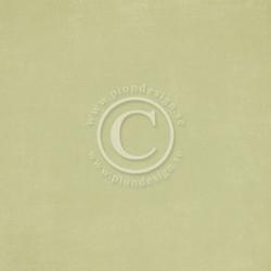 Pion Design Design Palette skräppipaperi Green II