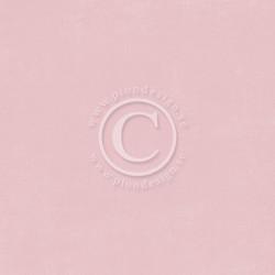 Pion Design Design Palette skräppipaperi Pink II