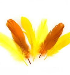 Sulat, oranssi ja keltainen, 15 kpl