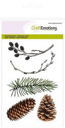 CraftEmotions leimasinsetti pine branch, willow catkins
